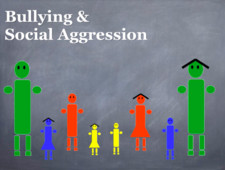 bullying social aggression book cover 225x225 75