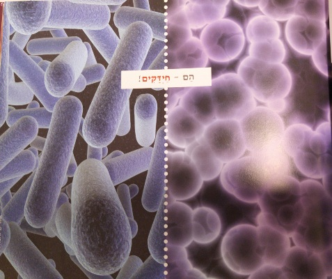 תצלום מדעי מהספר ערוך